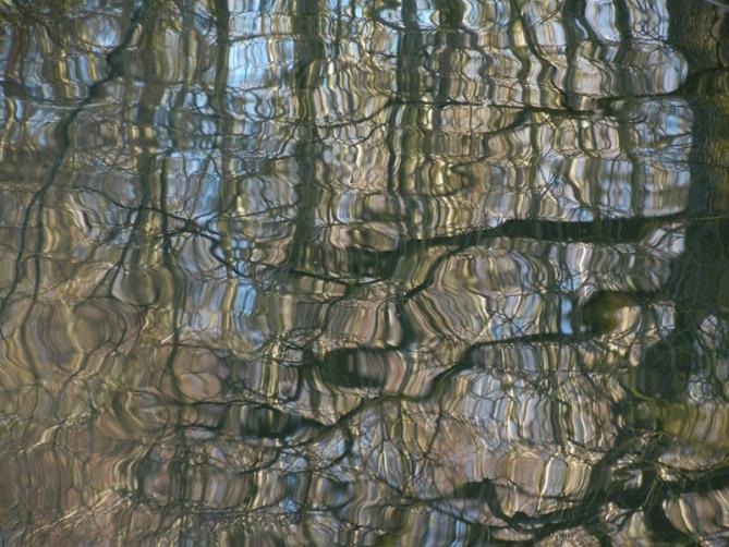 http://pini-art.de/files/gimgs/th-18_3---Fliesende-Formen--Fine-Art-Print-auf-Alu-Dibond-unter-Acrylglas--60-x-80-cm_600px.jpg