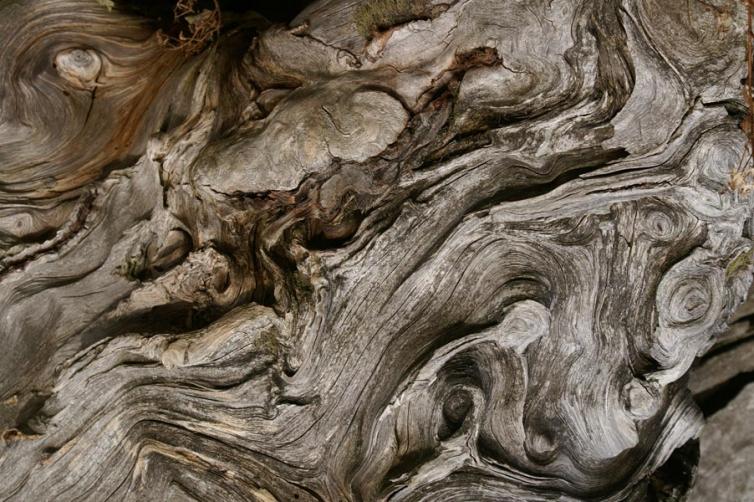 https://pini-art.de/files/gimgs/th-18_4---Wooden-Eye--60x80-mit-Rahmen-Schattenfuge---(PICT0023Ausschn)_600.jpg